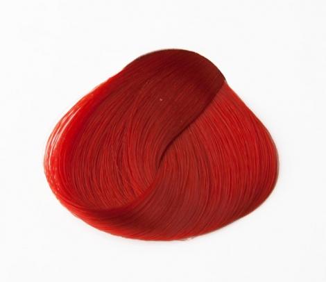 ČERVENÁ (Directions) - Coral Red